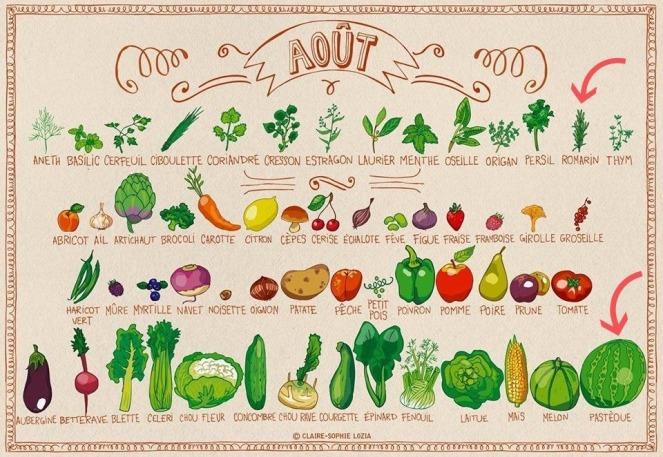 aout - romarin pastèque.jpg