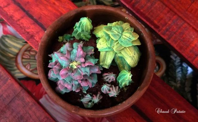 gateau cactus douille - chaud patate - 01.jpg