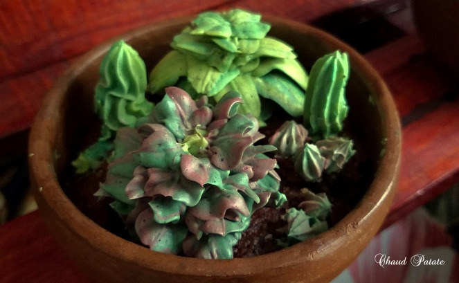 gateau cactus douille - chaud patate - 02.jpg