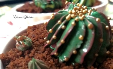 gateau succulentes chaud patate 02