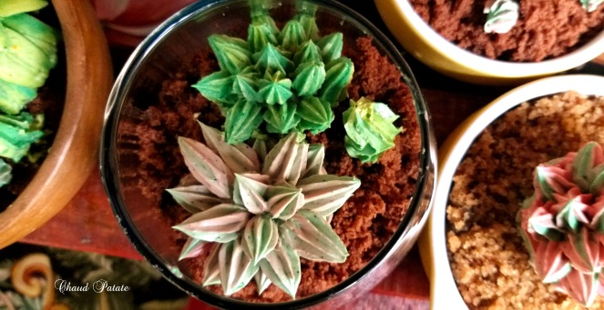 gateaux cactus chaud patate 03.jpg