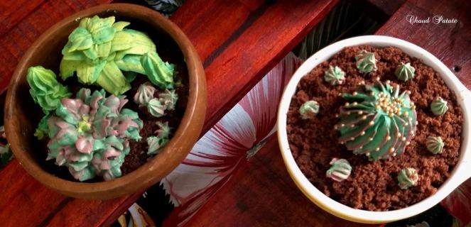 gateaux cactus chaud patate 04.jpg